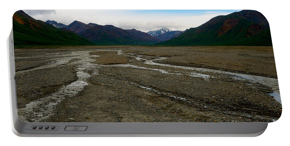 Denali National Park Portable Battery Charger featuring the photograph Denali National Park 3 by Jacqueline Athmann