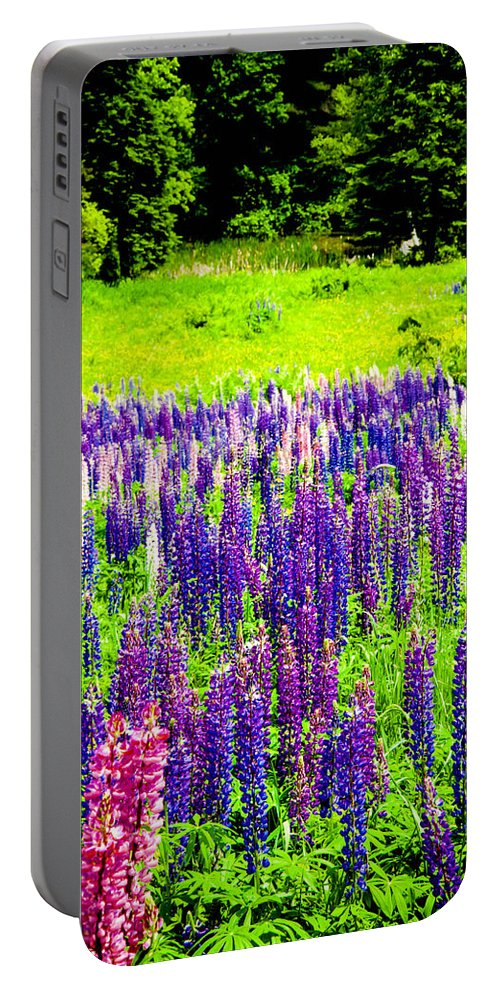 Crawford Notch Portable Battery Charger featuring the photograph Depth Of Color by Greg Fortier