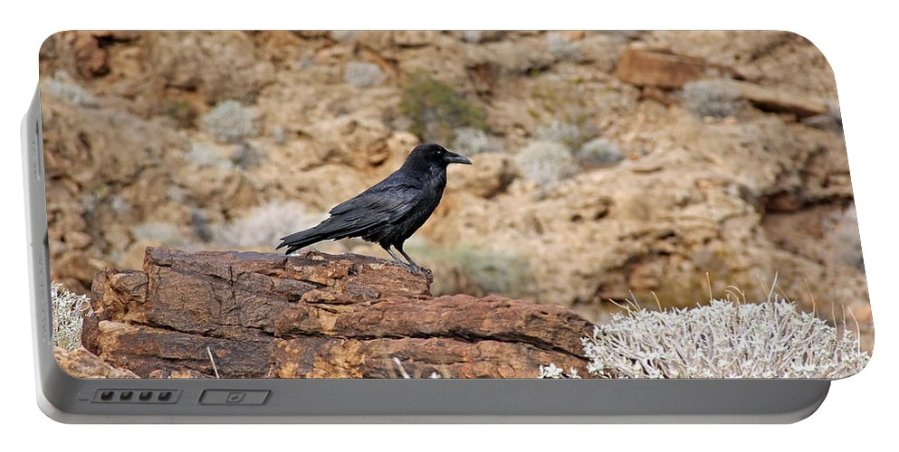 Animals Portable Battery Charger featuring the photograph Jet Black Desert Dweller by Debbie Oppermann