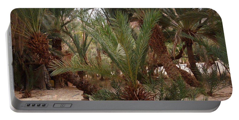 Colette Portable Battery Charger featuring the photograph Desert Oase Camp Sinai Egypt by Colette V Hera Guggenheim