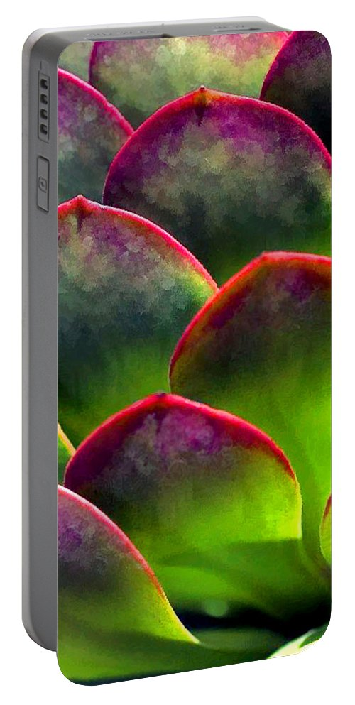 Cactus Portable Battery Charger featuring the painting Desert Succulent In Bright Sun And Shade by Elaine Plesser