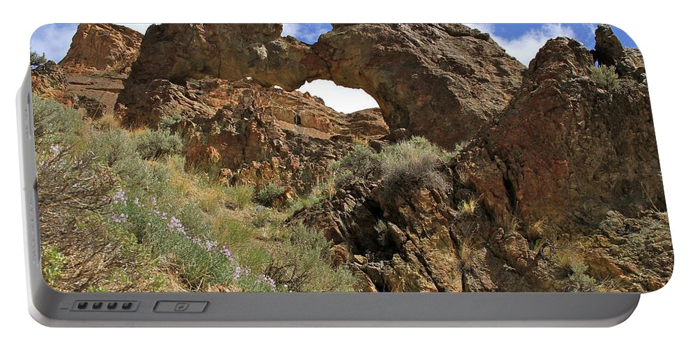 Landscape Portable Battery Charger featuring the photograph Desert Wildflowers Grand Arch by Ed Riche