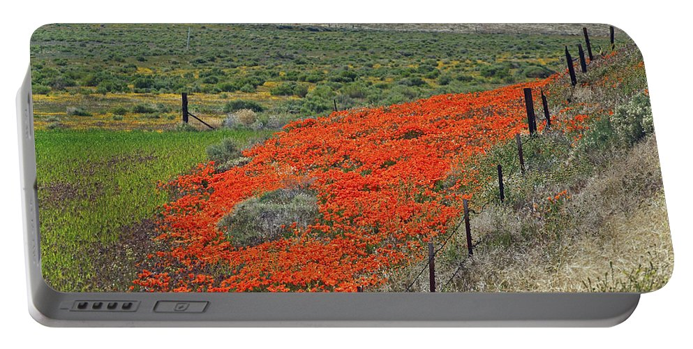 Wildflowers Portable Battery Charger featuring the photograph Desert Wildflowers by Howard Stapleton