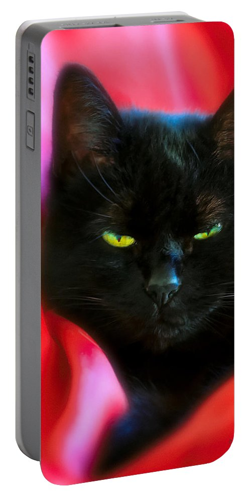 Black Cat Portable Battery Charger featuring the photograph Devil In A Red Dress by Bob Orsillo
