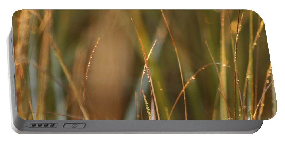 Dew Portable Battery Charger featuring the photograph Dewy Grasses by Nadine Rippelmeyer