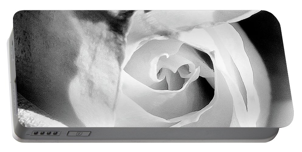 Rose Portable Battery Charger featuring the photograph Diamond Rose Bw Palm Springs by William Dey