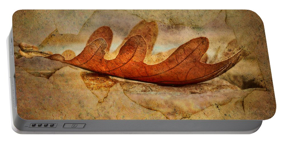 Leaf Portable Battery Charger featuring the photograph Disclosure by Nikolyn McDonald