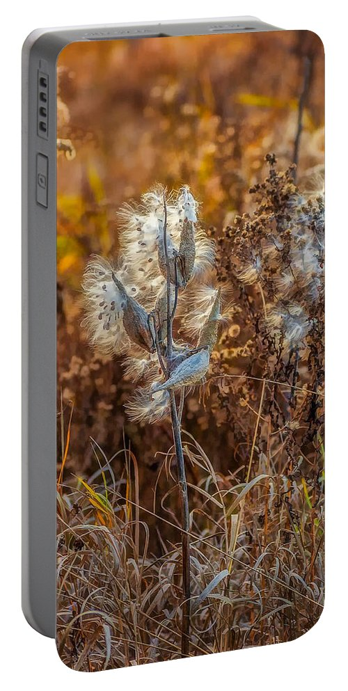 Weeds Portable Battery Charger featuring the photograph Ditch Beauty by Steve Harrington