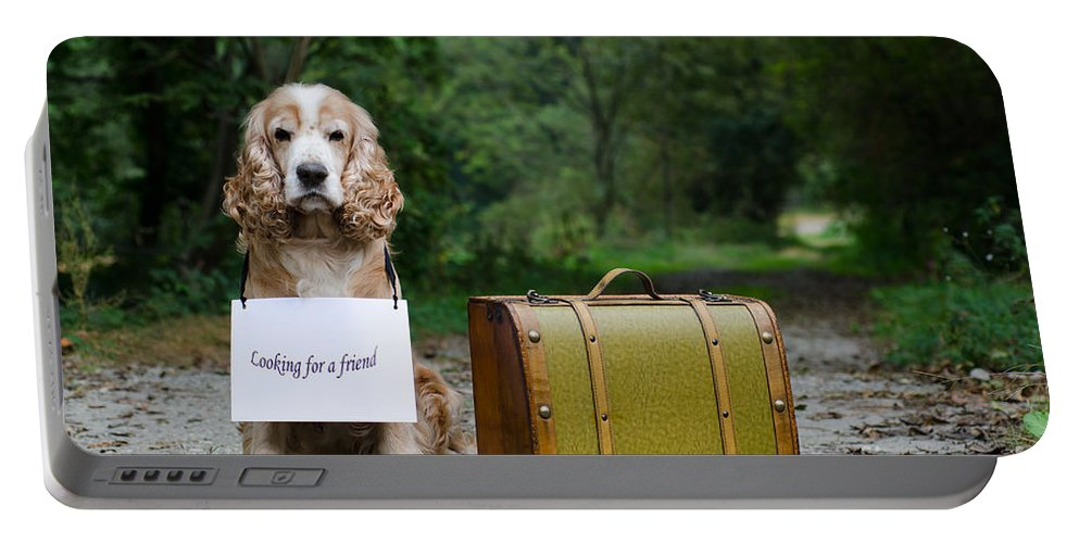 Dog Portable Battery Charger featuring the photograph Dog And Suitcase by Mats Silvan