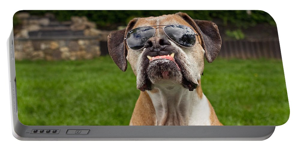 Boxer Portable Battery Charger featuring the photograph Dog Wearing Sunglass by Stephanie McDowell
