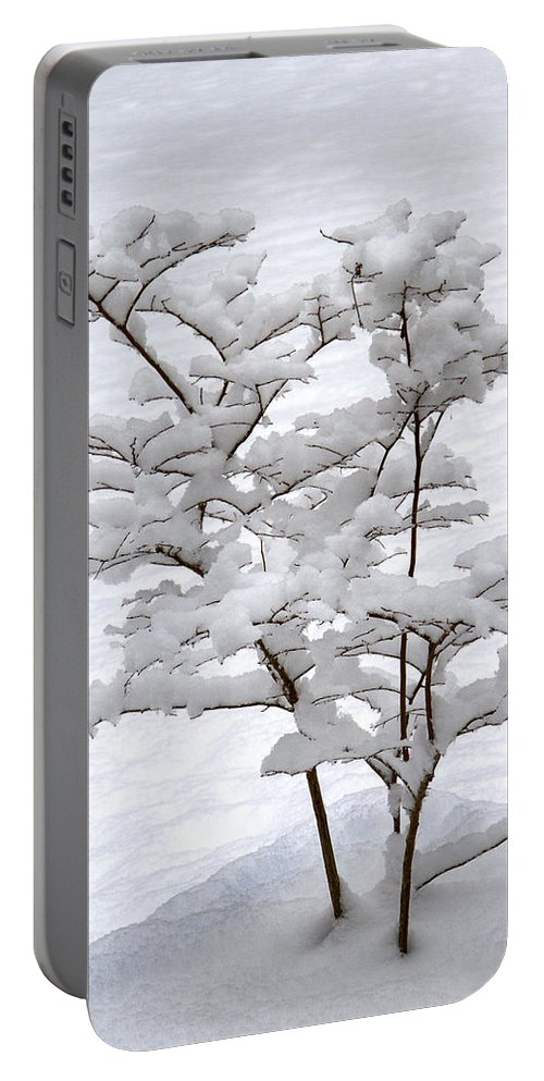Christmas Card Portable Battery Charger featuring the photograph Dogwood In Snow by Guy Shultz
