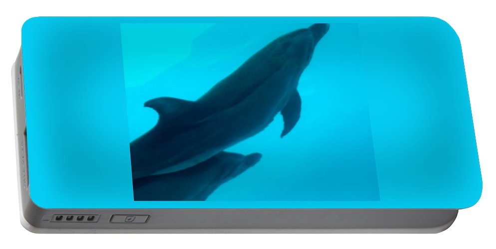 Dolphins Portable Battery Charger featuring the photograph Dolphins Photo by Susan Vincil