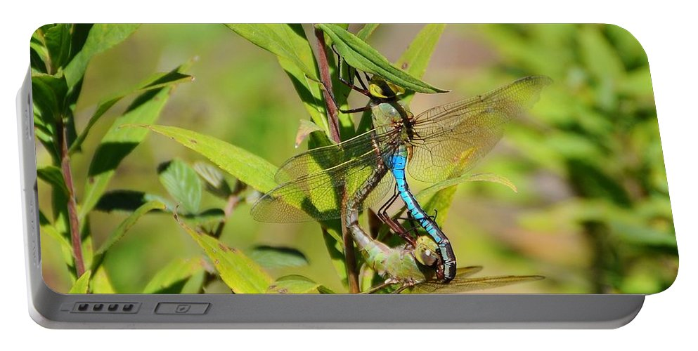 Dragonfly Portable Battery Charger featuring the photograph Double Dragon by Al Powell Photography USA