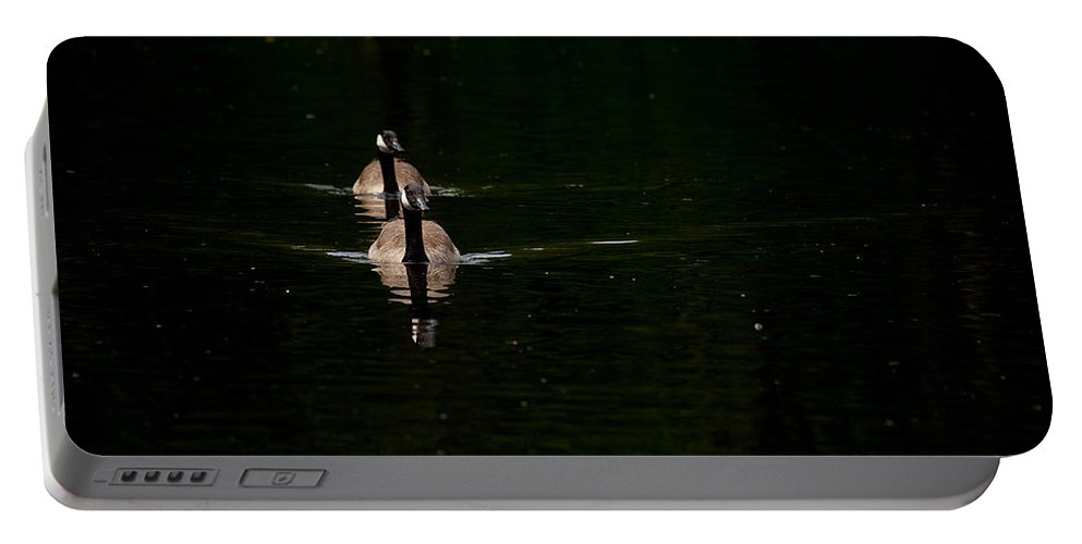 Canada Goose Portable Battery Charger featuring the photograph Double Goose by Karol Livote