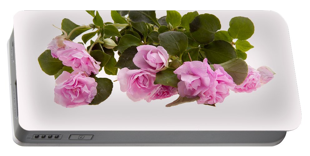 Plant Portable Battery Charger featuring the photograph Double Impatiens by Scott Sanders