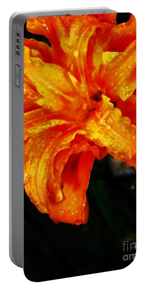 Lily Portable Battery Charger featuring the photograph Double Petaled Lilly by Jannice Walker