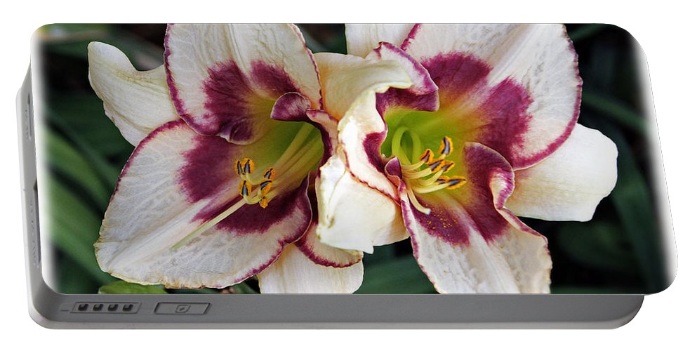Lilies Portable Battery Charger featuring the photograph Double The Bloom by Elizabeth Winter