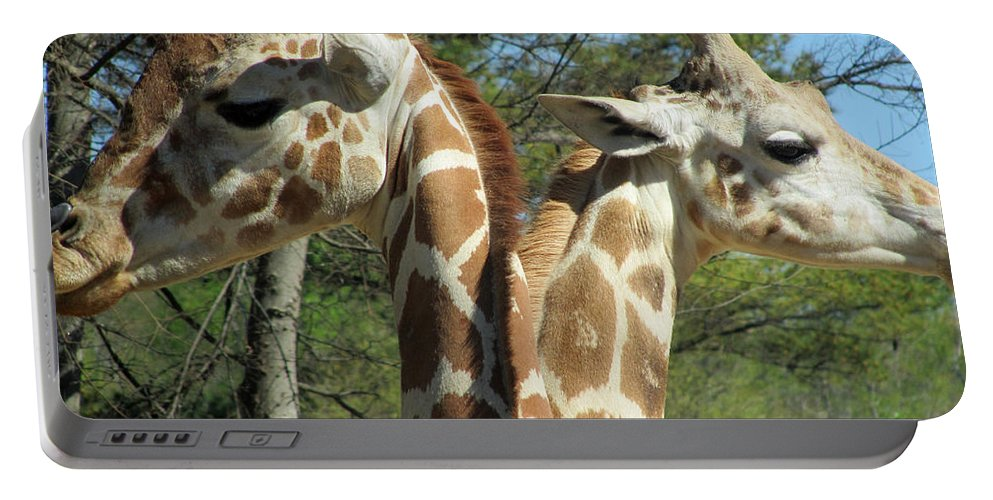 Giraffes Portable Battery Charger featuring the photograph Giraffes With A Twist by Sandra Reeves