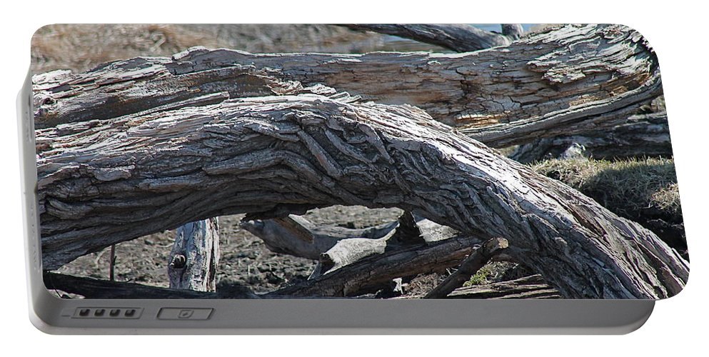 Trees Portable Battery Charger featuring the photograph Down Tree Arch by Wayne Williams