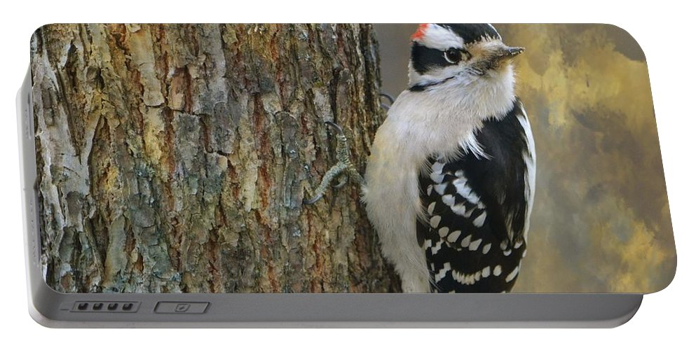 Bird Portable Battery Charger featuring the photograph Downy Woodpecker by Deena Stoddard