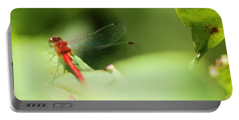 Dragon Portable Battery Charger featuring the photograph Red Dragon by Chuck Hicks