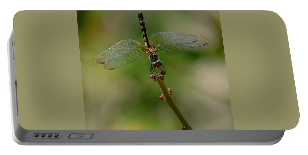 Dragonfly Portable Battery Charger featuring the photograph Dragonfly 2 by Leticia Latocki