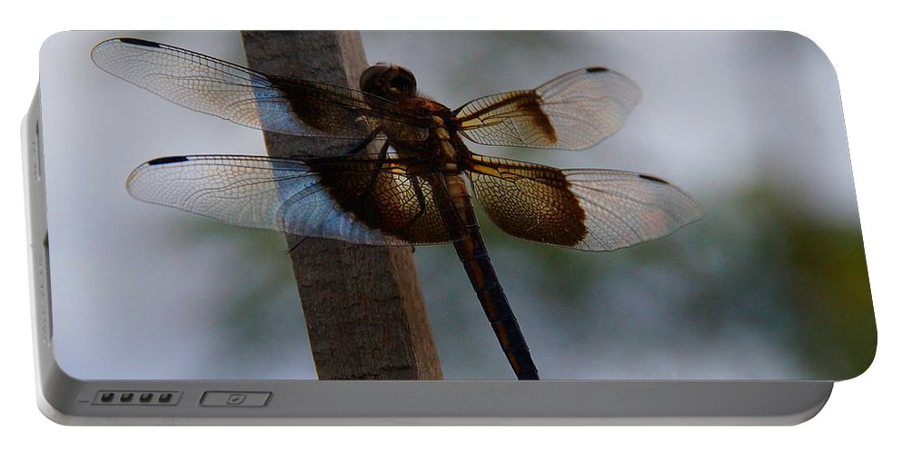 Dragonfly Portable Battery Charger featuring the photograph Dragonfly At Rest by Mick Anderson