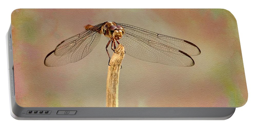 Dragonfly Portable Battery Charger featuring the photograph Dragonfly In Fantasy Land by Sabrina L Ryan