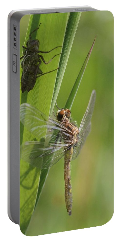 Dragonfly Portable Battery Charger featuring the photograph Dragonfly Metamorphosis - Eleventh In Series by Doris Potter