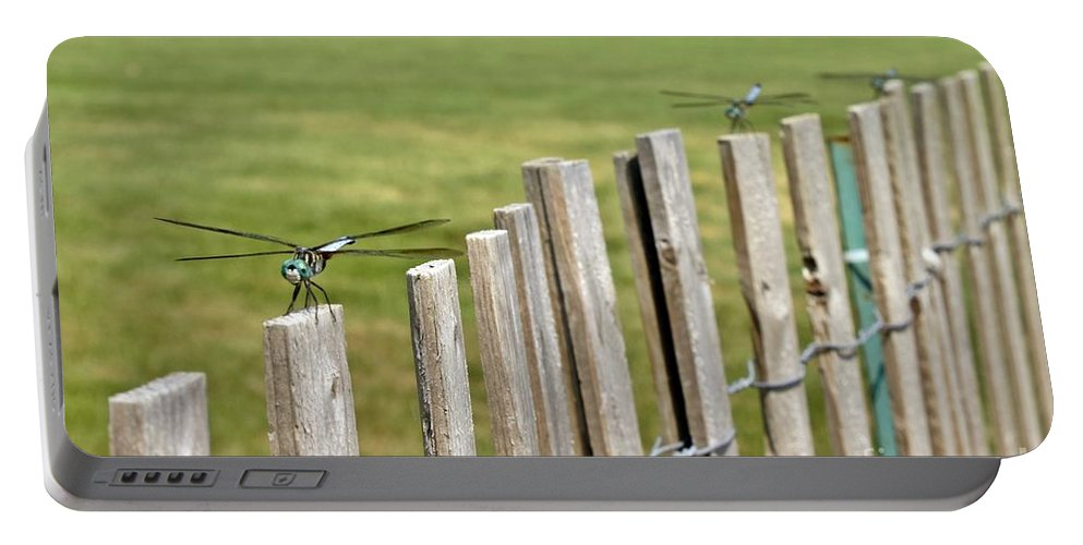 Dragonflies Portable Battery Charger featuring the photograph Dragonfly Runway by Lilliana Mendez