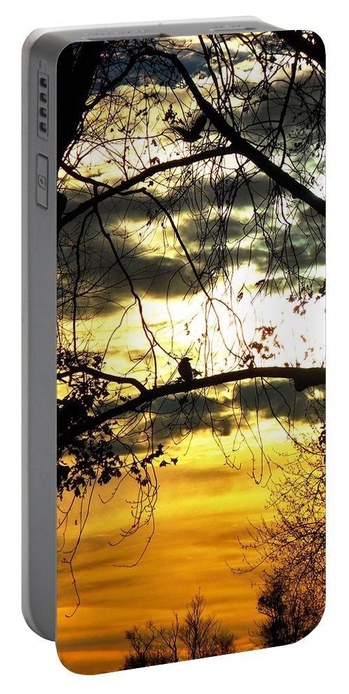 Bird In Tree Portable Battery Charger featuring the photograph Dream At Dusk by Gothicrow Images