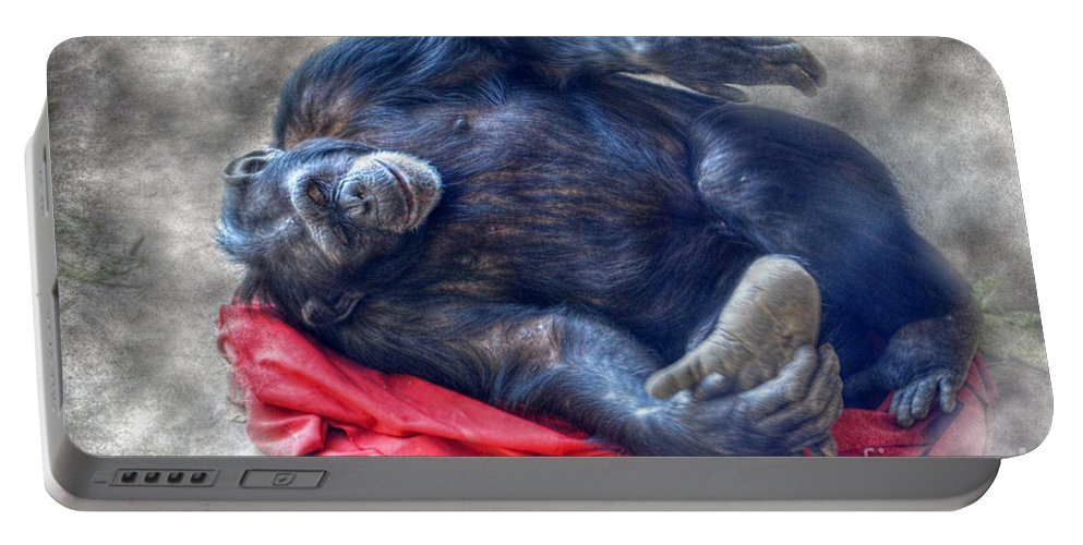 Landscape Portable Battery Charger featuring the photograph Dreaming Of Bananas Chimpanzee by Peggy Franz