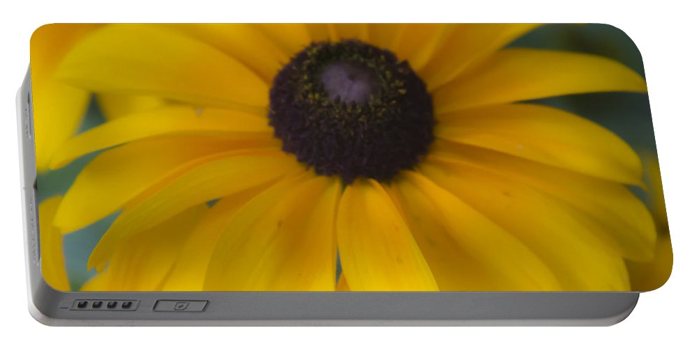Sunshine Portable Battery Charger featuring the photograph Dreamy Rudbeckia Squared by Teresa Mucha