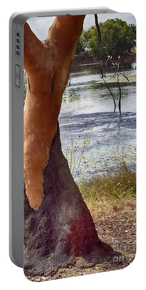 Billabong Portable Battery Charger featuring the photograph Dressed-up With Nowhere To Go by Douglas Barnard