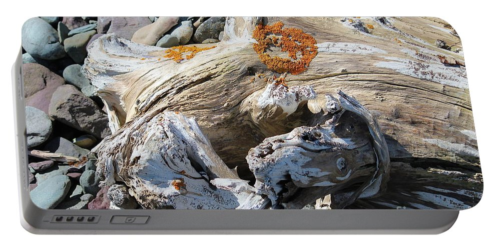 Driftwood Abstract Portable Battery Charger featuring the photograph Driftwood Abstract by Barbara Griffin