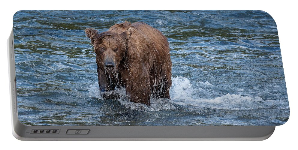 Alaska Portable Battery Charger featuring the photograph Dripping Grizzly by Joan Wallner