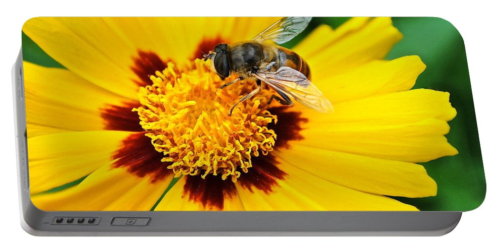 Queen Portable Battery Charger featuring the photograph Drone Bee by Frozen in Time Fine Art Photography