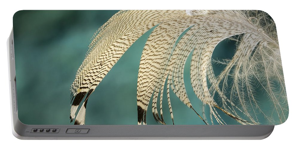 Design Portable Battery Charger featuring the photograph Droopy Feather by Jean Noren