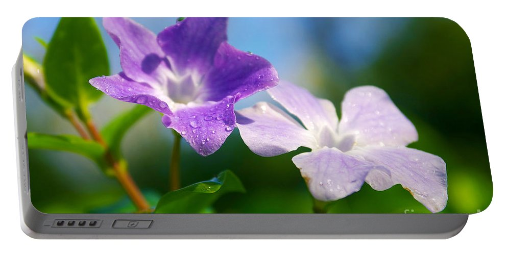 Abstract Portable Battery Charger featuring the photograph Drops On Violets by Carlos Caetano