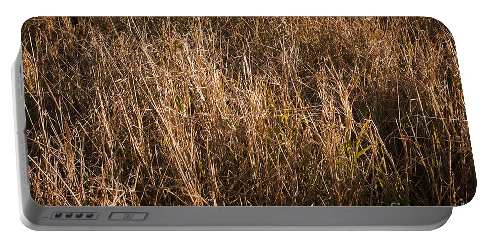 Background Portable Battery Charger featuring the photograph Dry Grass by Tim Hester