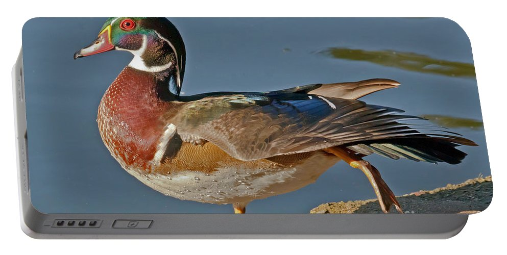 Kate Brown Portable Battery Charger featuring the photograph Duck Yoga by Kate Brown