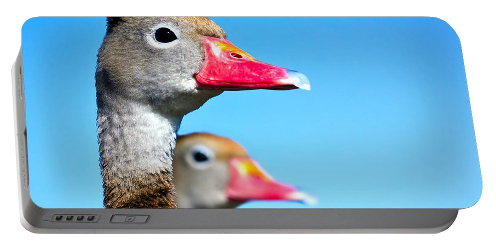 Duck Portable Battery Charger featuring the photograph Ducks At Attention by Mark Andrew Thomas
