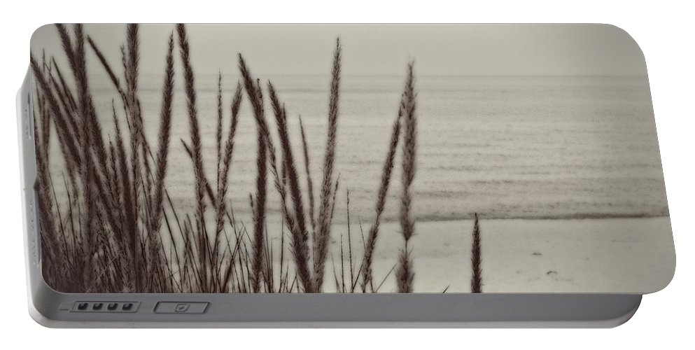 Beaches Portable Battery Charger featuring the Dune Grass In Early Spring by Michelle Calkins