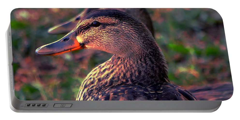 Duck Portable Battery Charger featuring the photograph Duplicity by Deena Stoddard