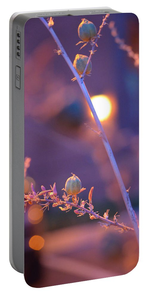 Dusk Flowers Portable Battery Charger featuring the photograph Dusk Flowers by Deprise Brescia