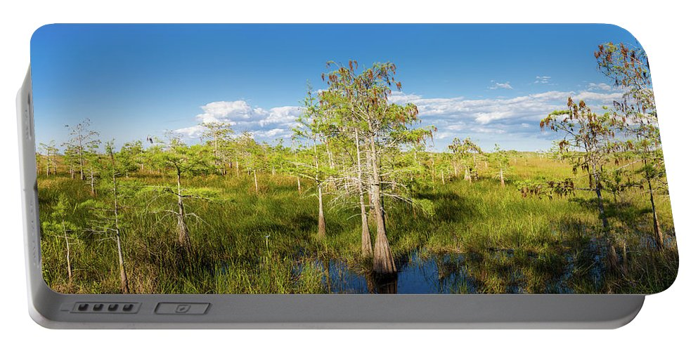Photography Portable Battery Charger featuring the photograph Dwarf Cypress Trees In A Field by Panoramic Images