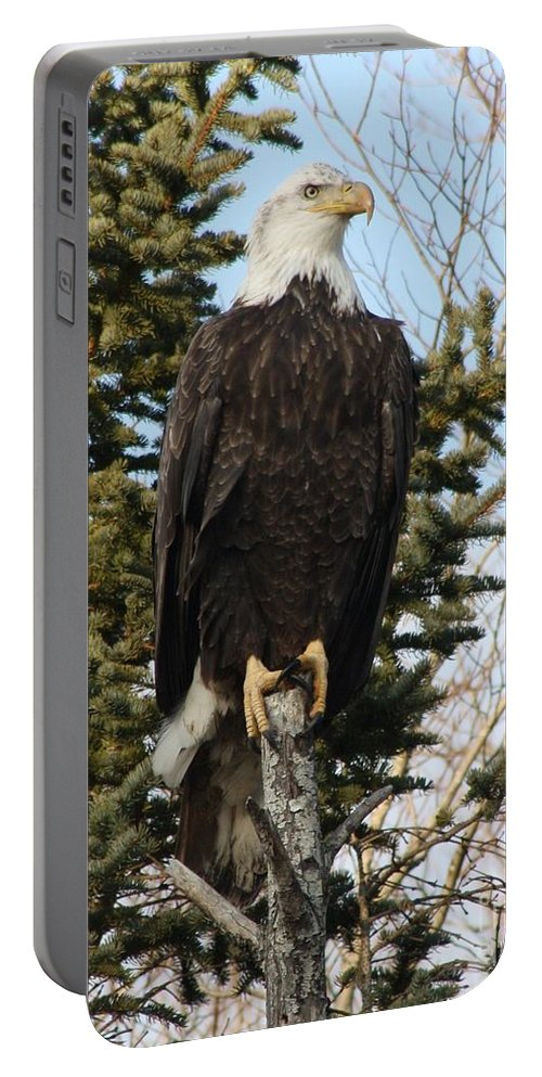 Eagle Portable Battery Charger featuring the photograph Eagle 3 by Joseph Marquis