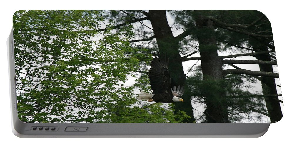 Eagle On Tree Portable Battery Charger featuring the photograph American Bald Eagle Flight On Roseland Lake by Neal Eslinger