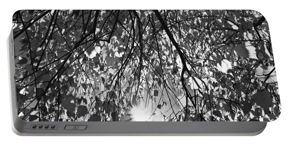 Autumn Portable Battery Charger featuring the photograph Early Autumn Monochrome by David Pyatt