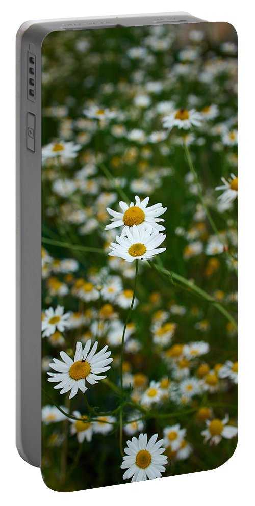 Lehto Portable Battery Charger featuring the photograph Early Fall by Jouko Lehto